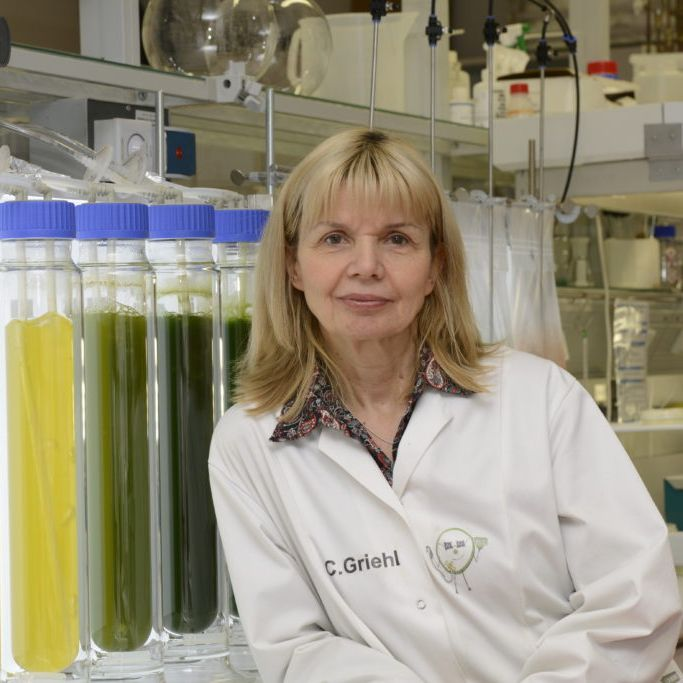 Expertin an Bord: Prof. Dr. Carola Griehl